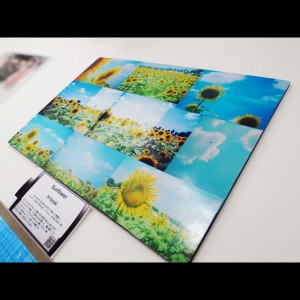 「Sunflower」/Film Camera Lover'z@デザインフェスタギャラリー